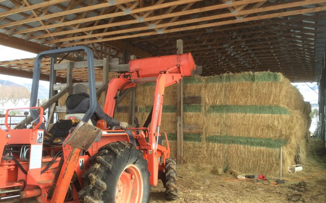 Hay Barn Re-Configuration